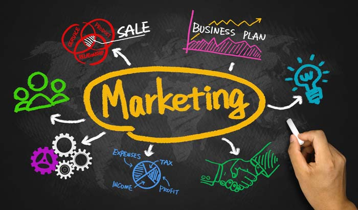 marketing concept with business graph and chart hand drawing on blackboard