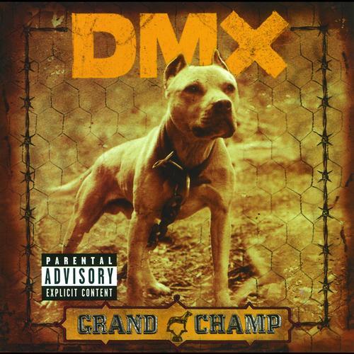 dmx-grand-champ