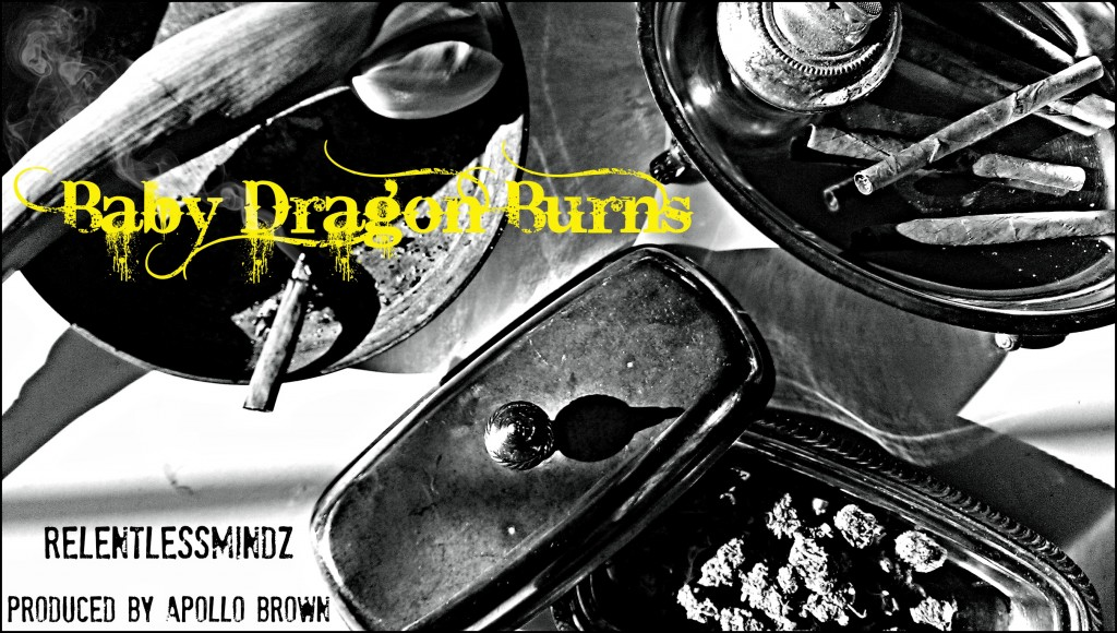 Baby-Dragon-Burns-front