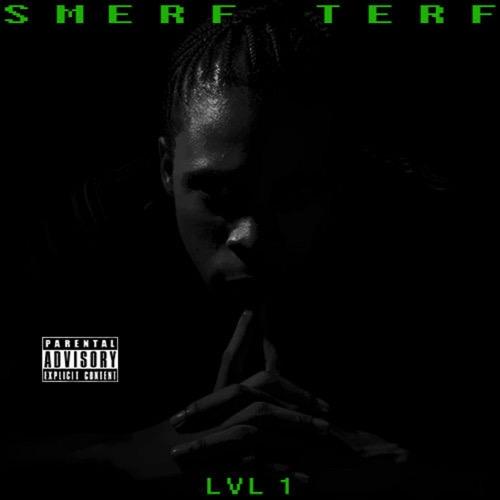 Smerf_Smerf_Terf_Lvl_1-front-large